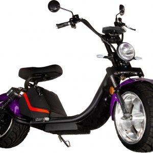 Elektrische scooter model Harley 3.0 20ah 25KM/H